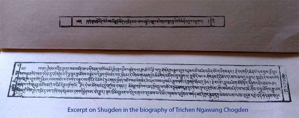 Excerpt on Shugden in the biography of Trichen Ngawang Chogden